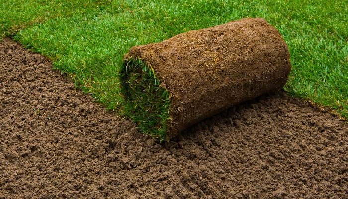 Cost of Laying Garden Turf