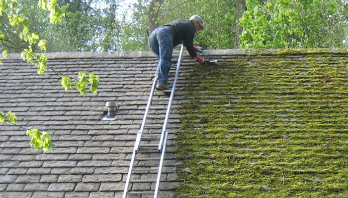 Cost of Removing Roof Moss Manually